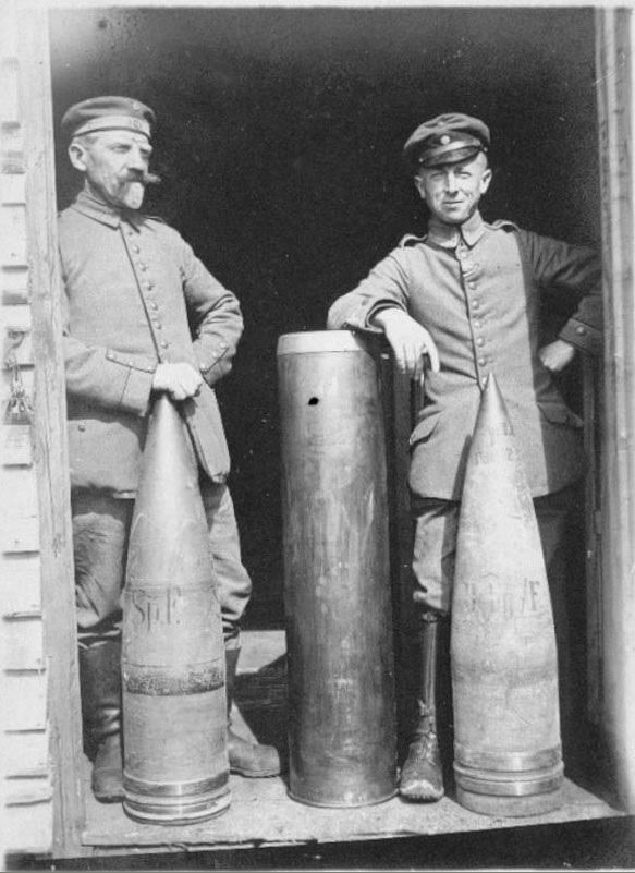 24cm Shell reference photo.jpg