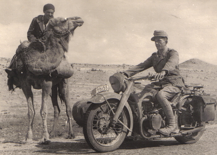 1498_bmw_and_camel.jpg